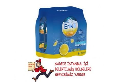 Erikli Limon Doğal Mineralli İçecek 6X200 Ml