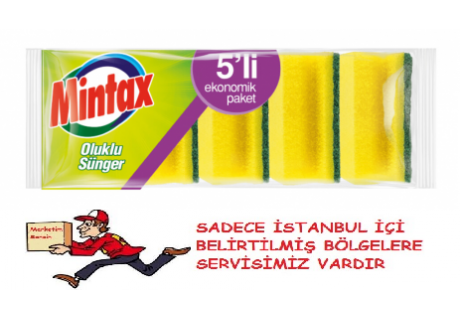 MINTAX OLUKLU SÜNGER 5'LI